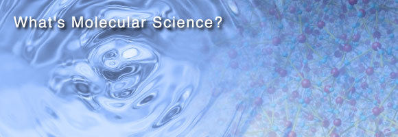 What is the molecular science?