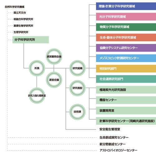 organization2019.jpg